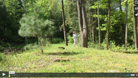 (Français) Prévention de la maladie de Lyme, piqûres insectes. Conseil santé Homeopathe.ca dans la forêt